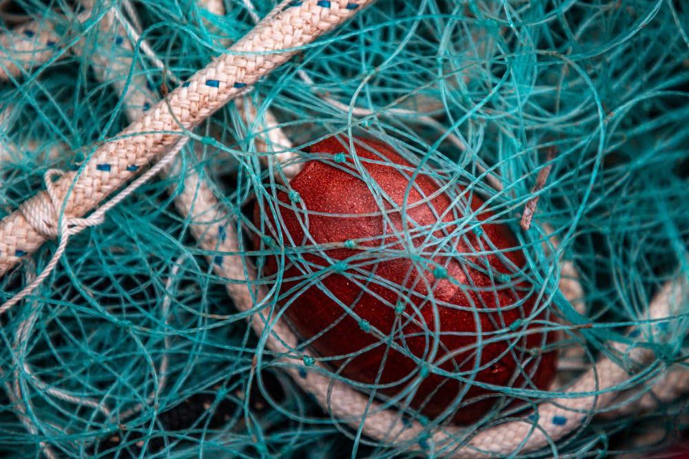 cosa vedere all'isola d'Elba  tele pescatori